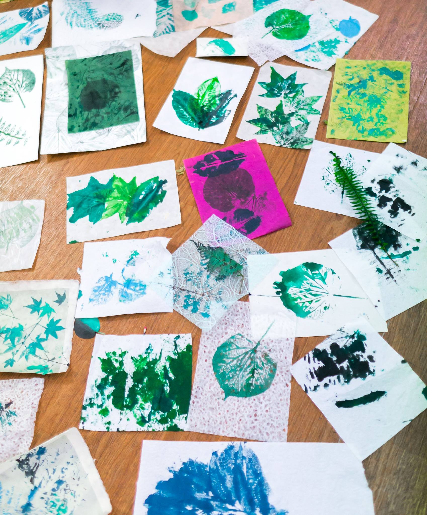 Collection of printed leaves from the creative workshop facilitated by artist Louise Trevitt