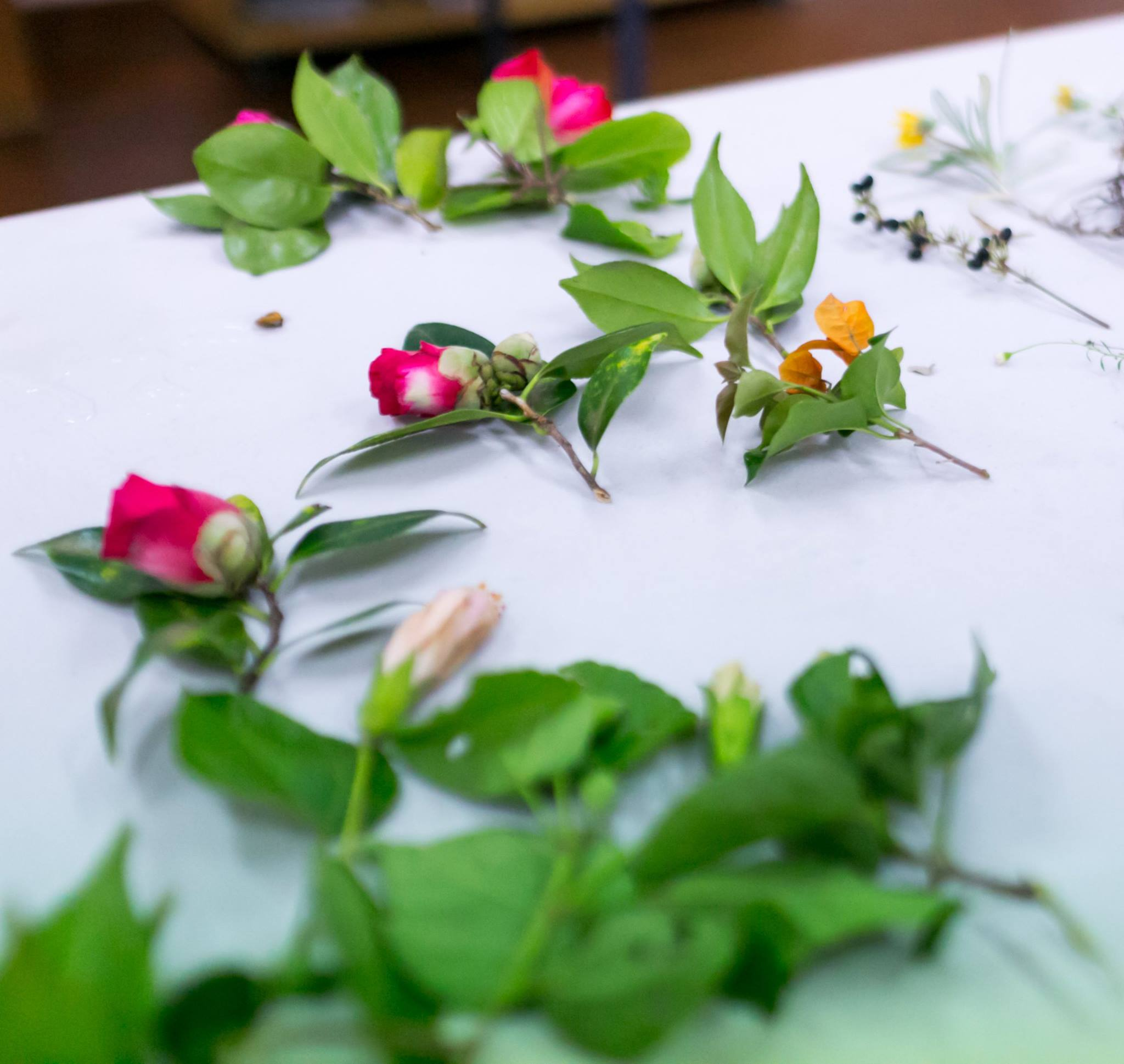 Fresh flowers and leaves used as inspiration in the creative painting workshop facilitated by painter Yaeli Ohana